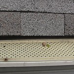 DIY Gutter Guard Comparison